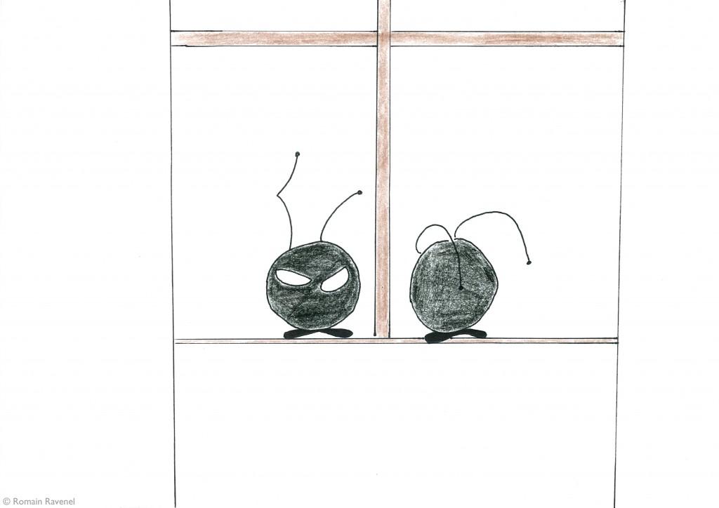 A travers la première fenêtre, Flea & Chip, les écarts, illustration, James & Cie, James & Cie - Les écarts,