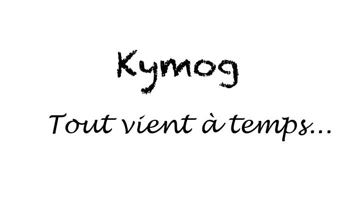 Daily-Life n°2, Kymog, Daily-Life,