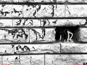 """""""Appar-Être"""" : Villes et Campagnes, image, photographie, Appar-Être, Romain Ravenel, James, graphisme, design, illustration, incrustation, poésie, poésie visuelle, poésie virtuel, théâtre virtuel, Metz, Silly sur Nied, campagne, ville, nature, James et cie, james & cie, james et compagnie, james et cie les écarts, james & cie les écarts, james et compagnie les écarts, création, projet, les écarts de James,"""