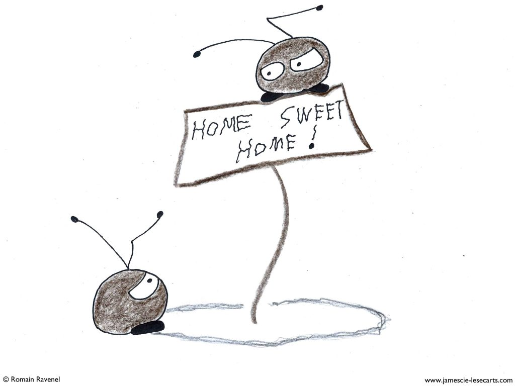 Dans les allers-retours, Flea & Chip, les écarts, les écarts de Flea & Chip, dessin, illustration, personnage, personnage dessiné, poésie, récit, humour, écriture, james et cie, james & cie , james et compagnie, james et cie les écarts, james & cie les écarts, james et compagnie les écarts,